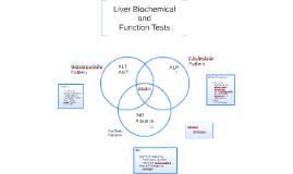 Liver Biochemical and