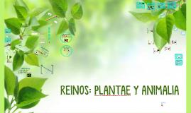 REINOS: PLANTAE Y ANIMALIA