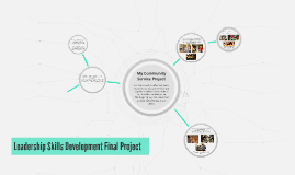 My Community Service Project