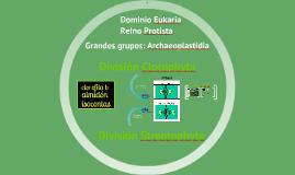 2017. Linaje Plantae. Algas Verdes (T13) para Biotecnología
