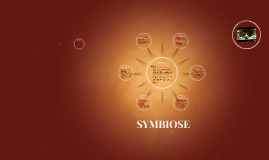 Copy of Symbiose