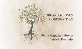 ORGANIZACIONES CORPORATIVAS