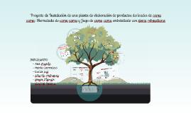 Copy of Proyecto de Instalación de una planta de elaboración de prod