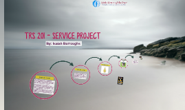 TRS 201 - SERVICE PROJECT