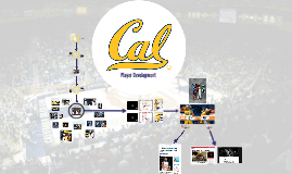 Copy of Cal Player Development