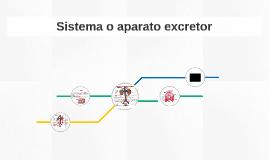 Sistema o aparato excretor