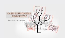 CONSTRUCCIONES ABSOLUTAS