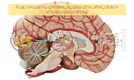 Copy of FLUJO SANGUÍNEO CEREBRAL, LÍQUIDO CEFALORRAQUÍDEO Y METABOLISMO CEREBRAL
