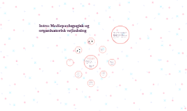 Intro Mediepædagogisk og organisatorisk vejledning