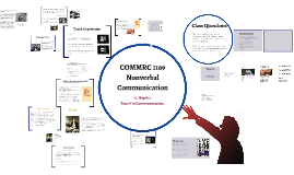 11. Haptics. Touch in Communication