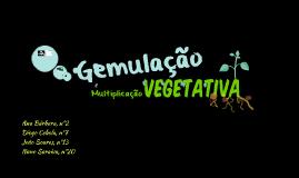 Gemulação e Multiplicação Vegetativa
