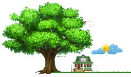 Copy of Diseño del producto