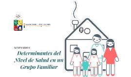 Determinantes del Nivel de Salud en un Grupo Familiar