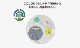 CICLOS DE LA MATERIA O BIOGEOQUÍMICOS