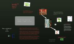 Biology 10 Report- Part 4