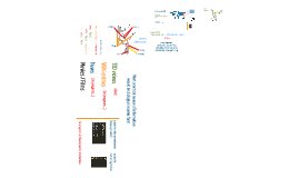 NAIST Internship 2013