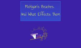 Michigan's Beaches.