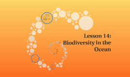 Lesson 14: Biodiversity in the Ocean