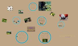 Science 7 Amazon Rainforest Ecosystem
