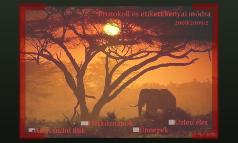 Protokoll és etikett kenyai módra