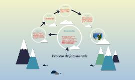 Proceso de fotosíntesis