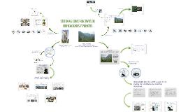 Copy of SISTEMAS CONSTRUCTIVOS DE EDIFICACIONES Y PUENTES