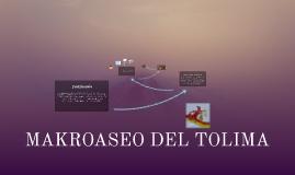 Copy of Copy of Copy of MAKROASEO DEL TOLIMA