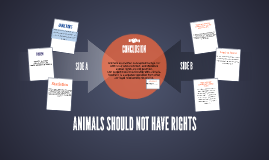 ANIMALS SHOULD NOT HAVE RIGHTS