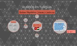 LA MINORÍA KURDA EN TURQUÍA