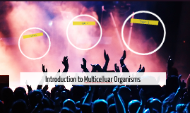 Introduction to Multicelluar Organisms