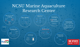 NCSU Marine Aquaculture Research Center