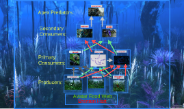 Copy of Avatar Food Web