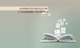 SUPERINTENDENCIA DE LA ECONOMIA SOLIDARIA