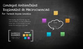 Consejos Ambientales Regionales de Macrocuencas
