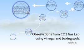 Observations from CO2 Gas Lab using vinegar and baking soda