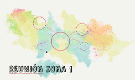 REUNIÓN ZONA 1