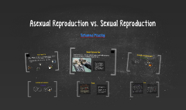 Copy of Asexual Reproduction vs. Sexual Reproduction