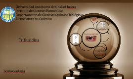 Universidad Autónoma de Ciudad JuárezInstituto de Ciencias B