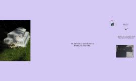 Thomas Hardy - life and career