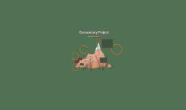 Bureaucracy Project