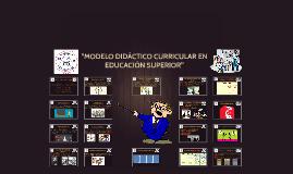"""""""MODELO DIDÁCTICO CURRICULAR"""""""