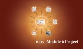 6.05- Module 6 Project