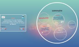 Copy of Elaboration d'un plan d'action commercial pour l'action anim