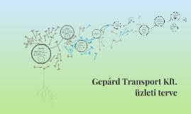Copy of Gepárd Transport Kft. üzleti terve