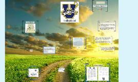 Copy of Mirage NEU Parent Forum 16-17