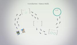 Copy of Introduction - Hamza Malik
