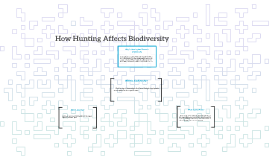 Copy of How Hunting Affects Biodiversity