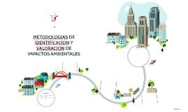 METODOLOGIAS DE IDENTIFICACION Y VALORACION DE IMPACTOS AMBI