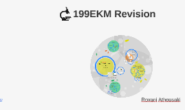 Copy of 199EKM Revision