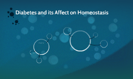 Diabetes and its Affect on Homeostasis